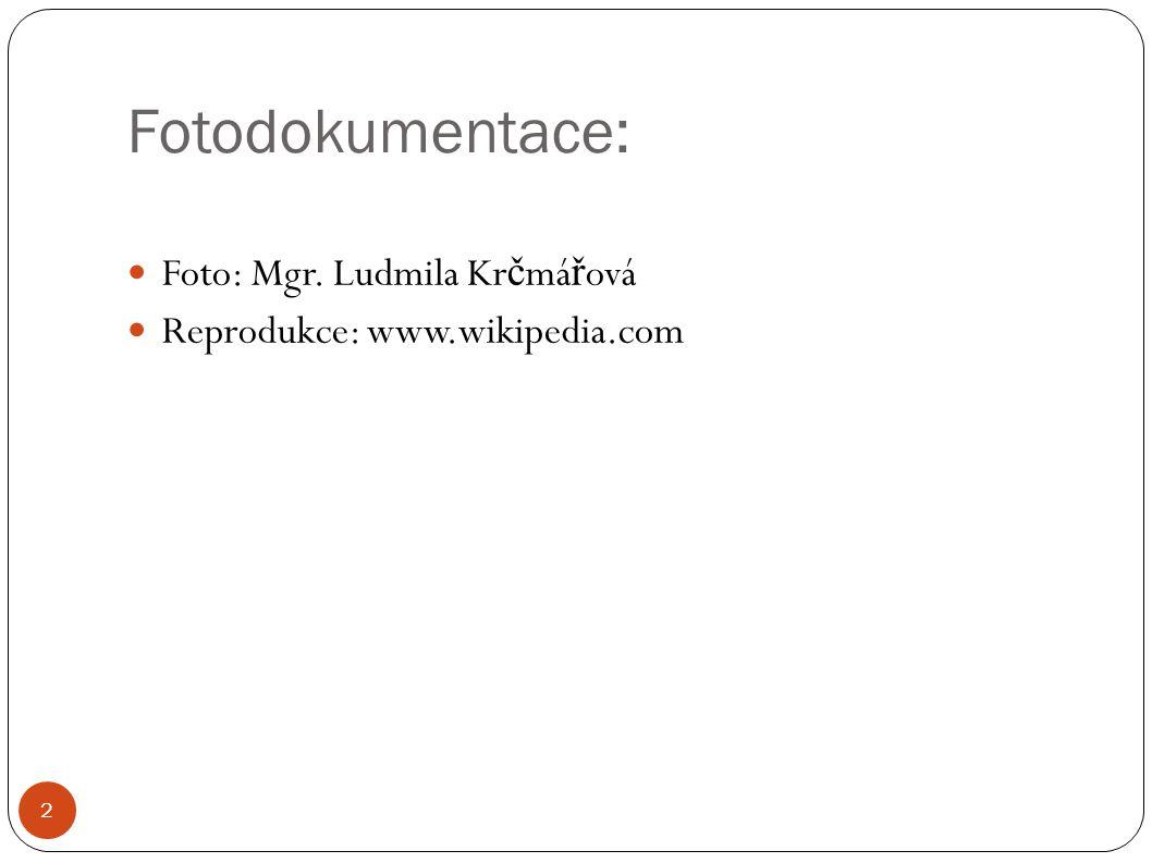 Fotodokumentace: Foto: Mgr. Ludmila Kr č má ř ová Reprodukce: www.wikipedia.com 2