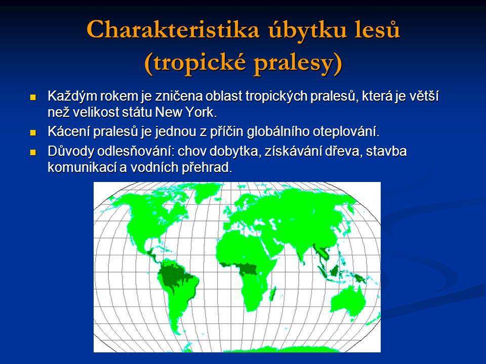 Charakteristika úbytku lesů (tropické pralesy) Každým rokem je zničena oblast tropických pralesů, která je větší než velikost státu New York.