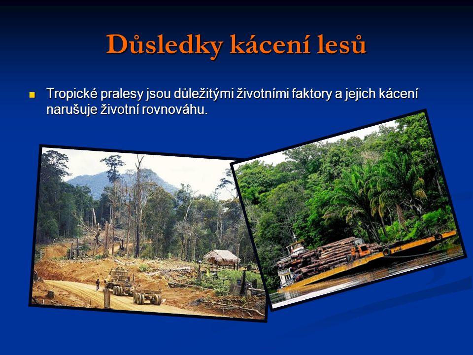 Důsledky kácení lesů Tropické pralesy jsou důležitými životními faktory a jejich kácení narušuje životní rovnováhu.