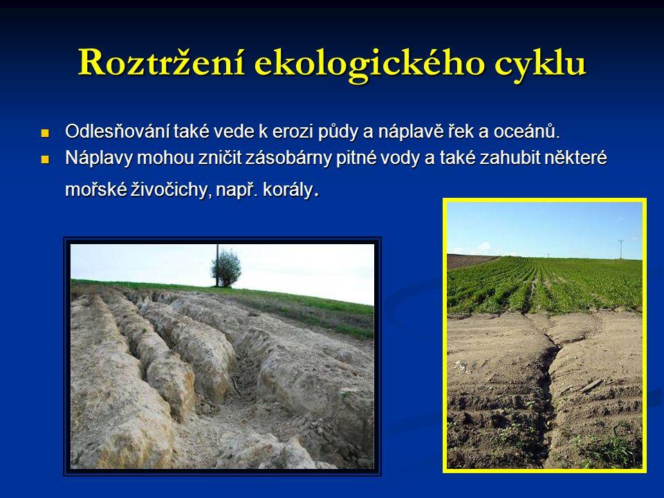 Roztržení ekologického cyklu Odlesňování také vede k erozi půdy a náplavě řek a oceánů.