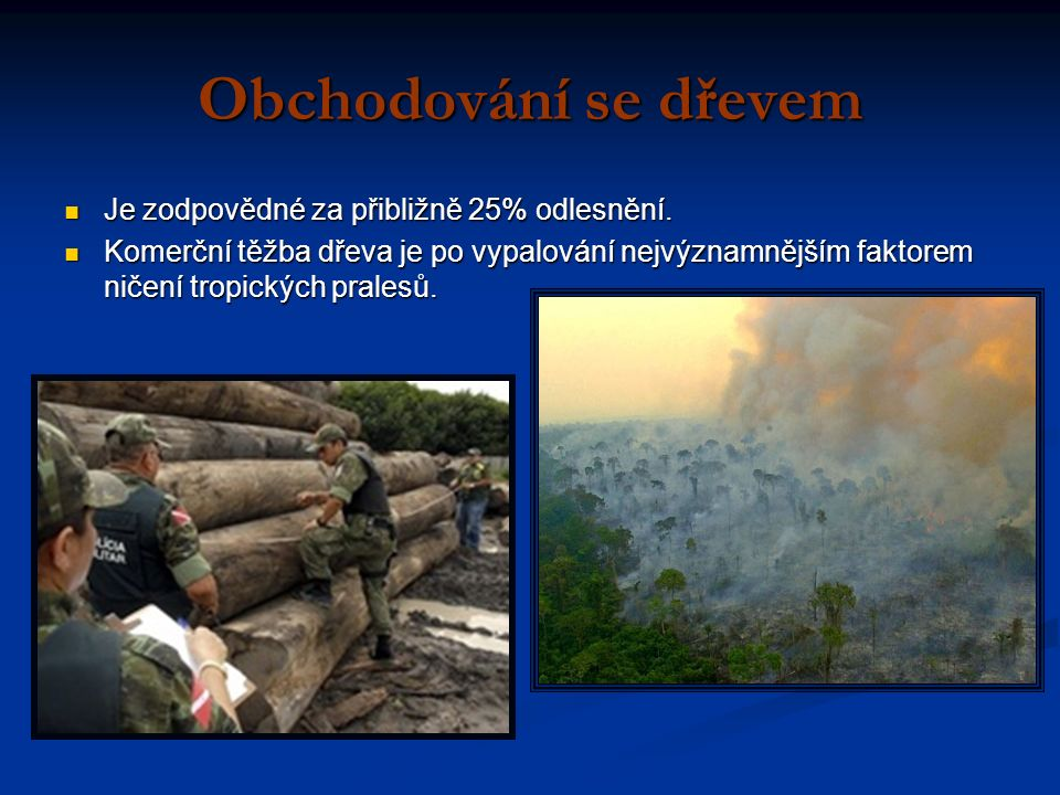 Obchodování se dřevem Je zodpovědné za přibližně 25% odlesnění.