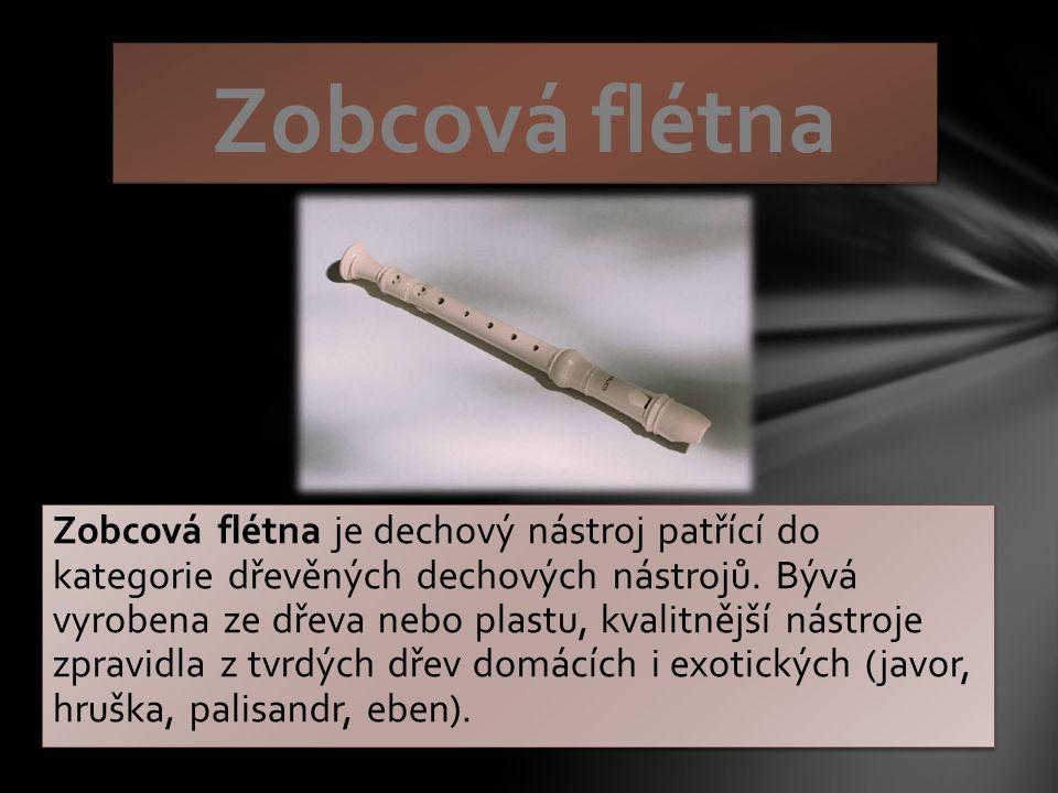 Zobcová flétna je dechový nástroj patřící do kategorie dřevěných dechových nástrojů.