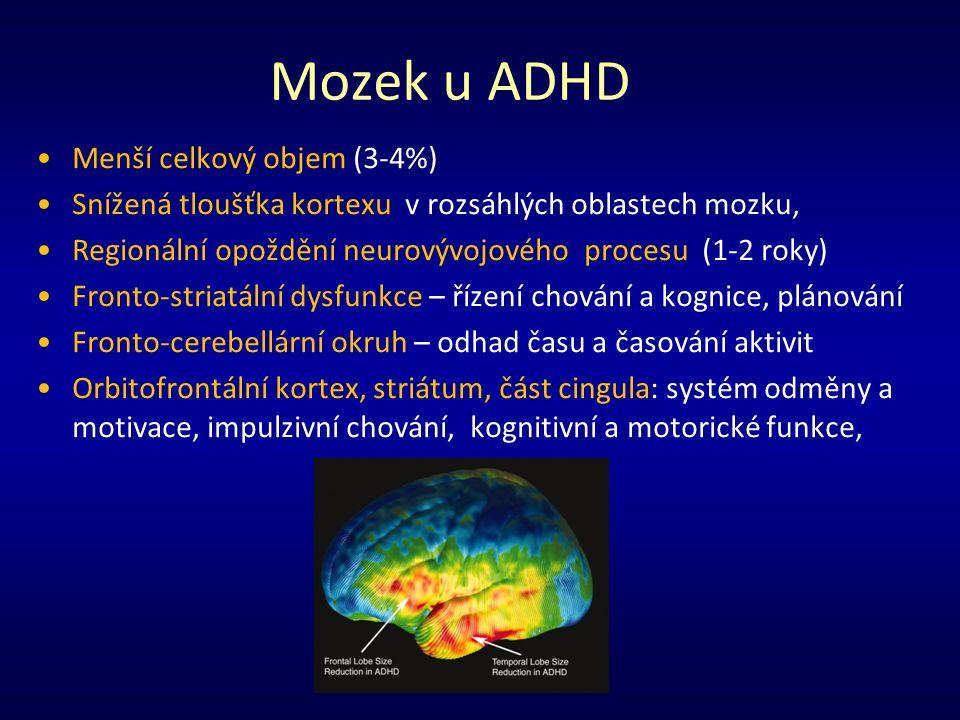 Mozek u ADHD Menší celkový objem (3-4%) Snížená tloušťka kortexu v rozsáhlých oblastech mozku, Regionální opoždění neurovývojového procesu (1-2 roky) Fronto-striatální dysfunkce – řízení chování a kognice, plánování Fronto-cerebellární okruh – odhad času a časování aktivit Orbitofrontální kortex, striátum, část cingula: systém odměny a motivace, impulzivní chování, kognitivní a motorické funkce,