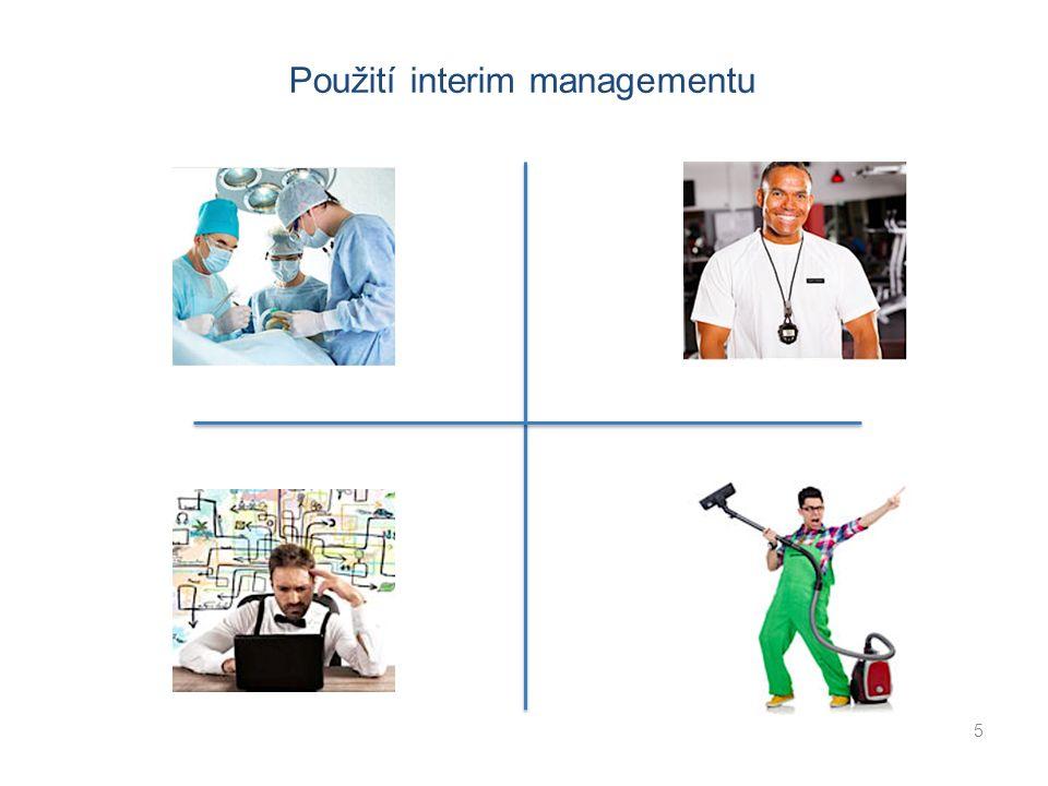 5 Použití interim managementu