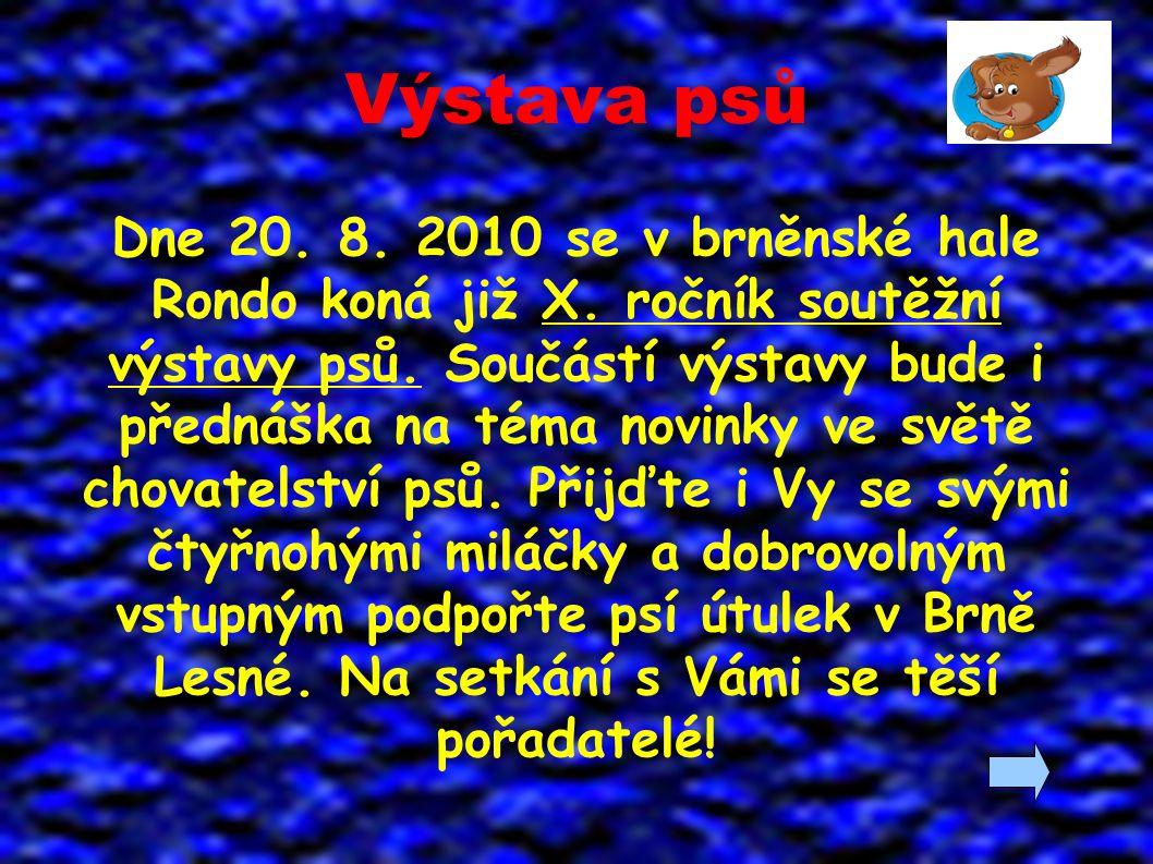Výstava psů Dne 20. 8. 2010 se v brněnské hale Rondo koná již X.