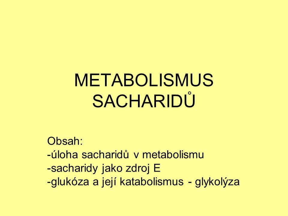 ROLE SACHARIDŮ V METABOLISMU: -zásobní látky: katabolismus SACH → uvolnění E → ATP -stavební látky: -glykoproteiny (většina proteinů v těle je glykována) -proteoglykany (pojivo)