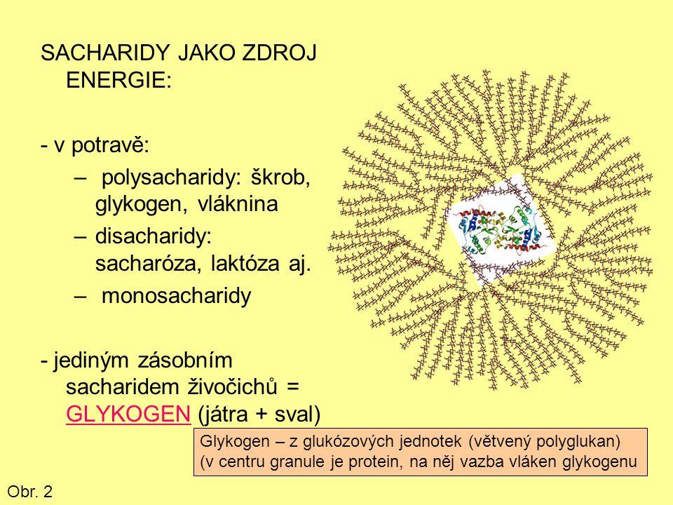 VÝZNAM GLUKÓZY: -všechny sacharidy (potrava) na glukózu převáděny -všechny sacharidy těla z glukózy syntetizovány -velký význam hlavně pro CNS, erytrocyty Obr.