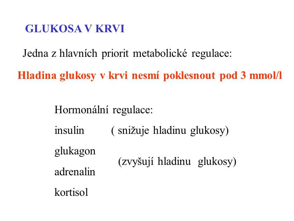 GLUKOSA V KRVI Jedna z hlavních priorit metabolické regulace: Hormonální regulace: insulin ( snižuje hladinu glukosy) glukagon adrenalin kortisol (zvyšují hladinu glukosy) Hladina glukosy v krvi nesmí poklesnout pod 3 mmol/l