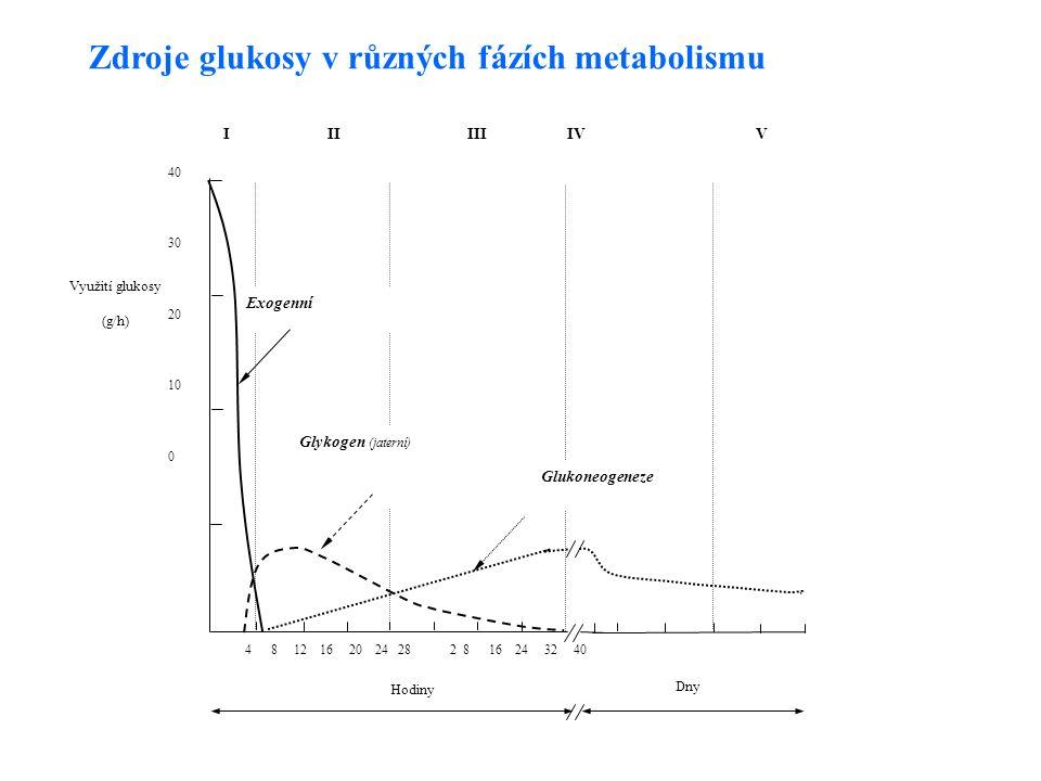4 8 12 16 20 24 28 2 8 16 24 32 40 Hodiny Dny Využití glukosy (g/h) 40 30 20 10 0 III III IV V Exogenní Glykogen (jaterní) Glukoneogeneze Zdroje glukosy v různých fázích metabolismu