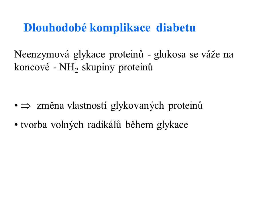 Dlouhodobé komplikace diabetu Neenzymová glykace proteinů - glukosa se váže na koncové - NH 2 skupiny proteinů  změna vlastností glykovaných proteinů tvorba volných radikálů během glykace