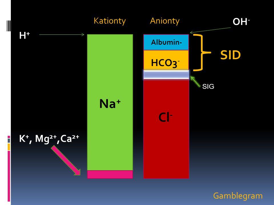 Na = 138,5 Cl = 104,5 laktát = 14 OH - = 20 SID= 20 + 1 l H1/1 Na = 138,5 mmol/l Cl = 105 mmol OH - = 19,5 mmol Laktát 18 mmol/l SID = 20 mmol/l H1/1 acidifikuje méně než F1/1 těsně po rychlé aplikaci