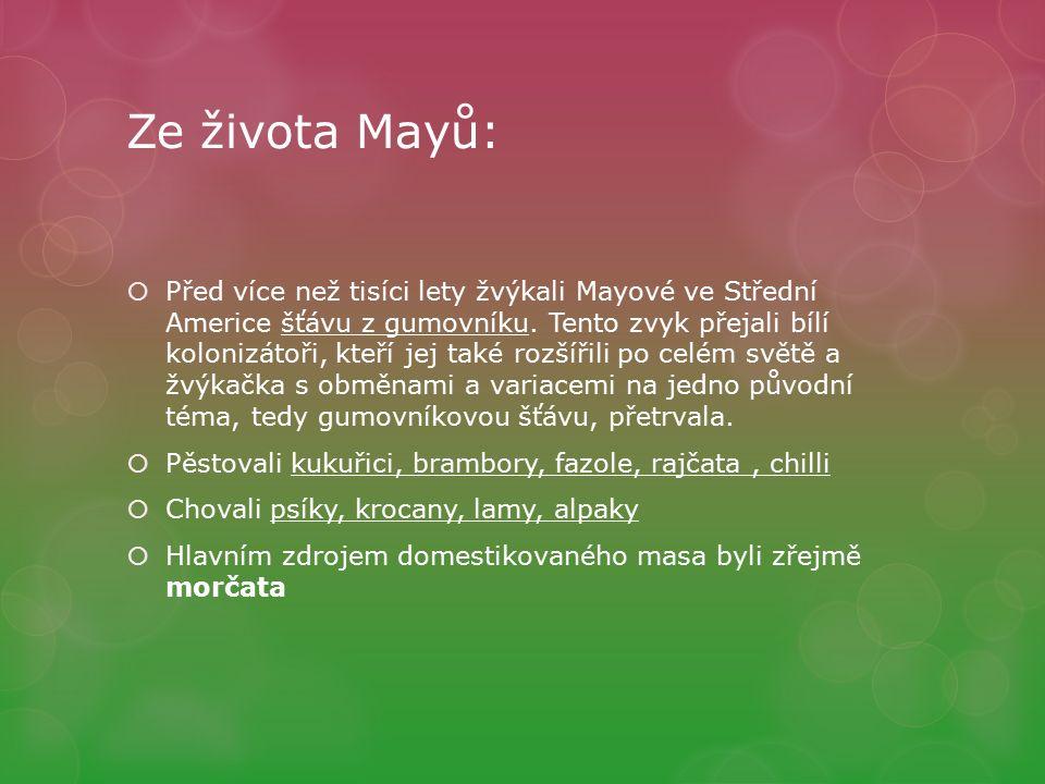 Ze života Mayů:  Před více než tisíci lety žvýkali Mayové ve Střední Americe šťávu z gumovníku.