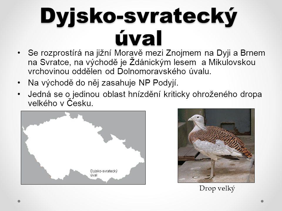Dyjsko-svratecký úval Se rozprostírá na jižní Moravě mezi Znojmem na Dyji a Brnem na Svratce, na východě je Ždánickým lesem a Mikulovskou vrchovinou oddělen od Dolnomoravského úvalu.