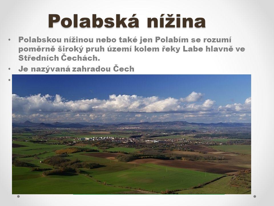Pojmenuj zobrazené plodiny. Které další plodiny se v Polabské nížině pěstují?