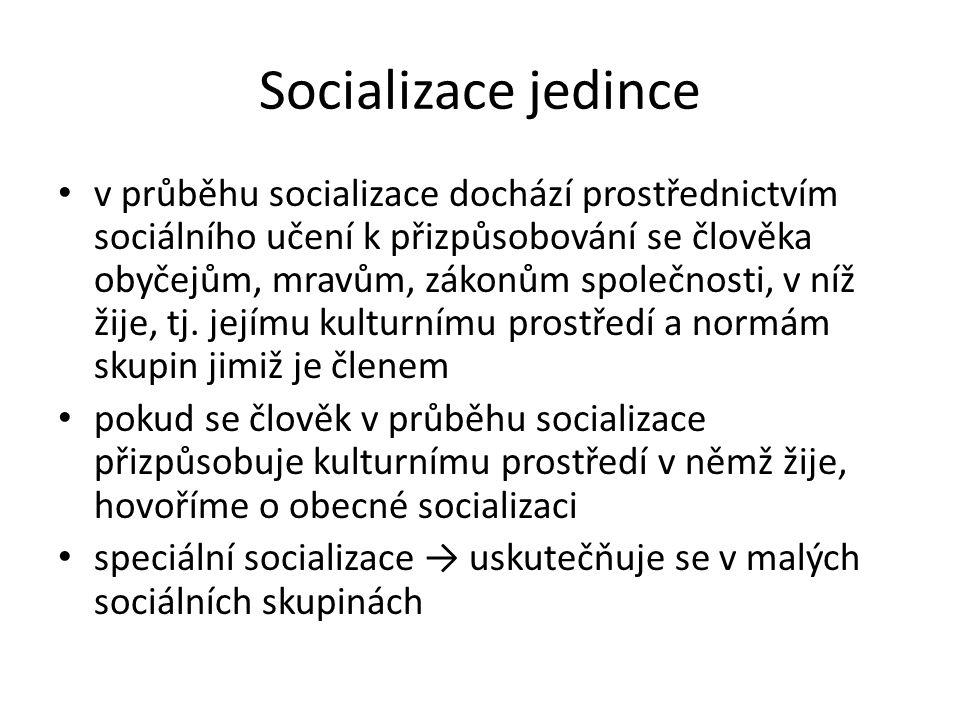 Socializace jedince v průběhu socializace dochází prostřednictvím sociálního učení k přizpůsobování se člověka obyčejům, mravům, zákonům společnosti,