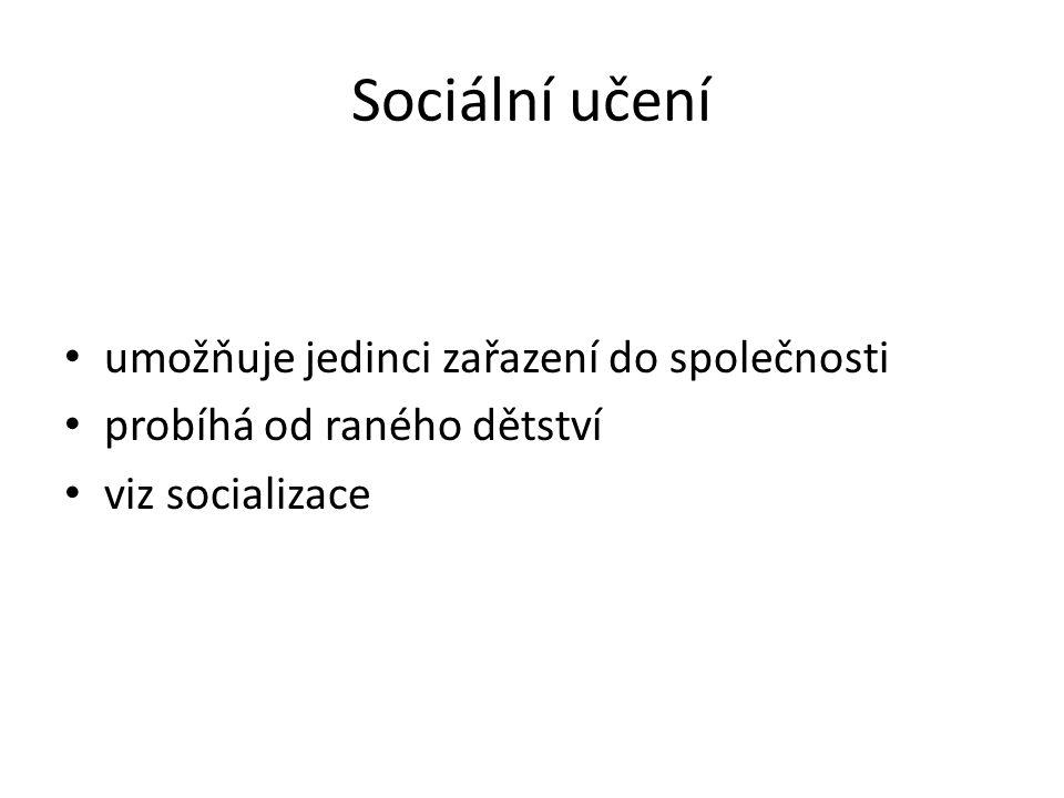 Sociální učení umožňuje jedinci zařazení do společnosti probíhá od raného dětství viz socializace