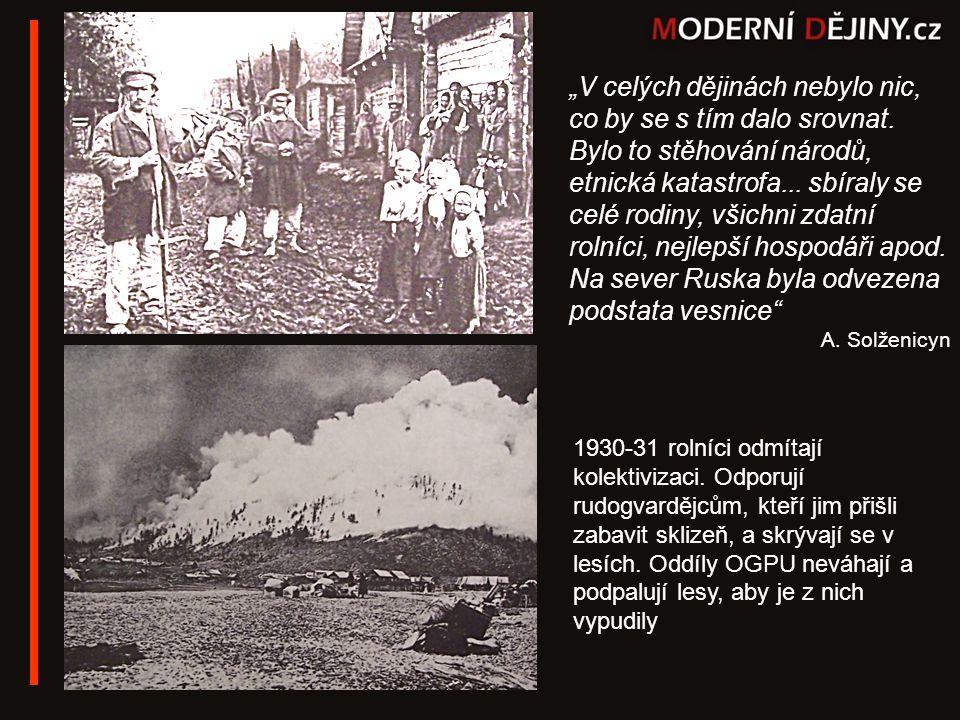 1930-31 rolníci odmítají kolektivizaci. Odporují rudogvardějcům, kteří jim přišli zabavit sklizeň, a skrývají se v lesích. Oddíly OGPU neváhají a podp