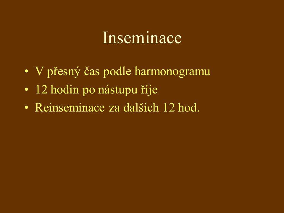 Inseminace V přesný čas podle harmonogramu 12 hodin po nástupu říje Reinseminace za dalších 12 hod.