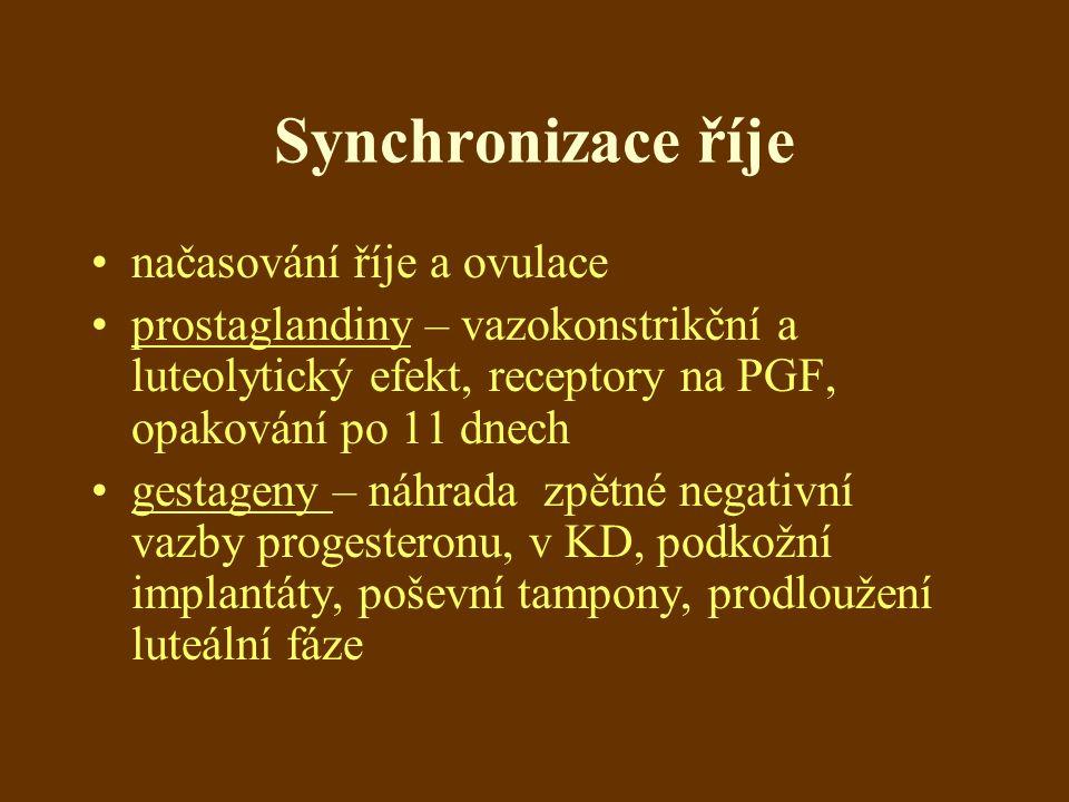 Synchronizace říje načasování říje a ovulace prostaglandiny – vazokonstrikční a luteolytický efekt, receptory na PGF, opakování po 11 dnech gestageny – náhrada zpětné negativní vazby progesteronu, v KD, podkožní implantáty, poševní tampony, prodloužení luteální fáze