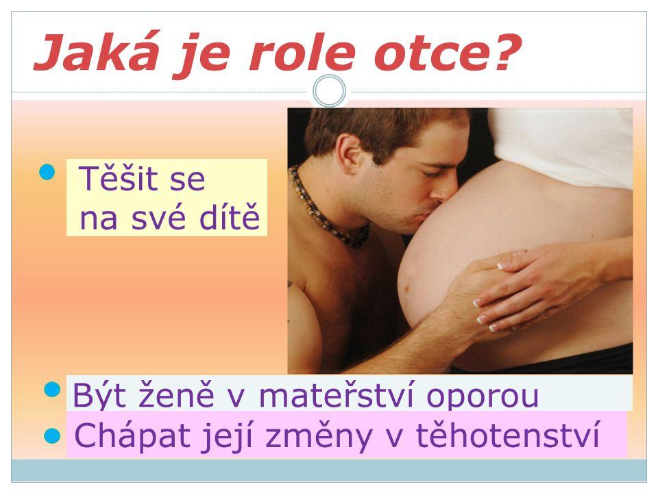Jaká je role otce Těšit se na své dítě Být ženě v mateřství oporou Chápat její změny v těhotenství
