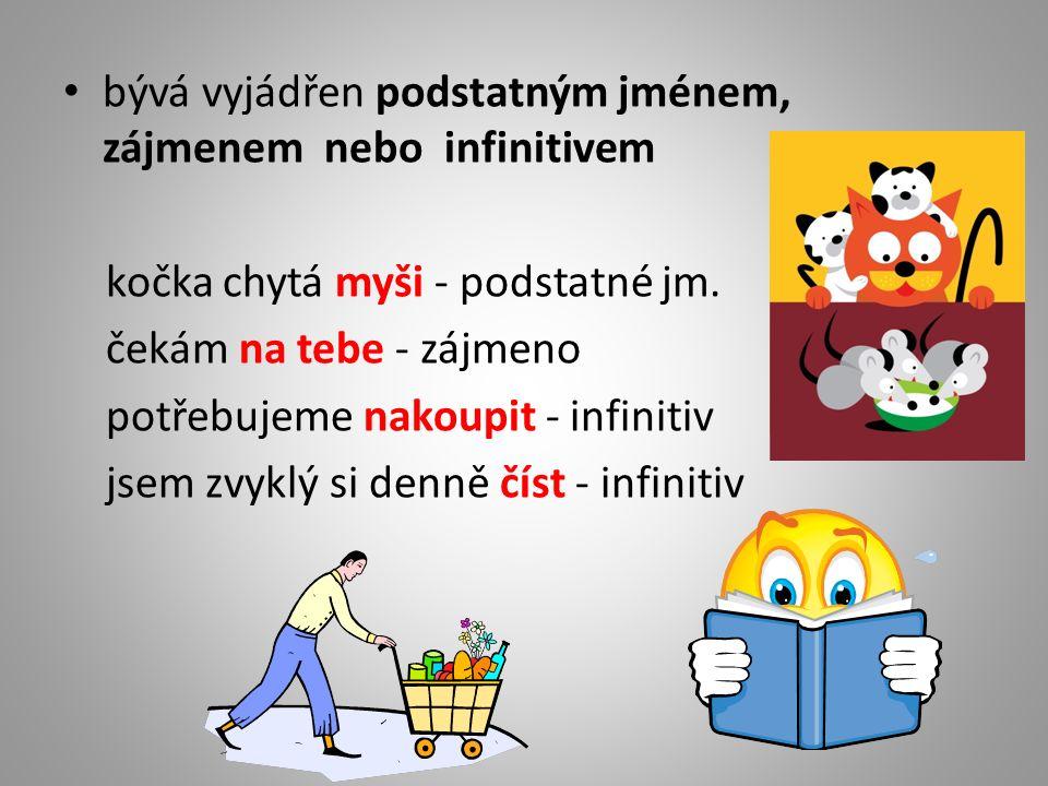 bývá vyjádřen podstatným jménem, zájmenem nebo infinitivem kočka chytá myši - podstatné jm.