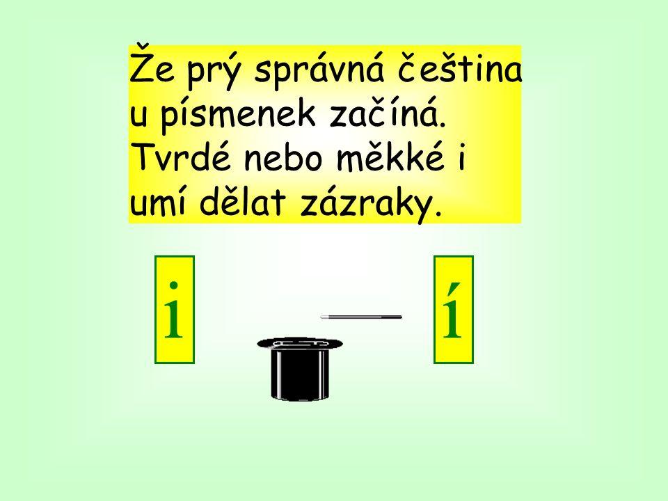 Že prý správná čeština u písmenek začíná. Tvrdé nebo měkké i umí dělat zázraky. ií
