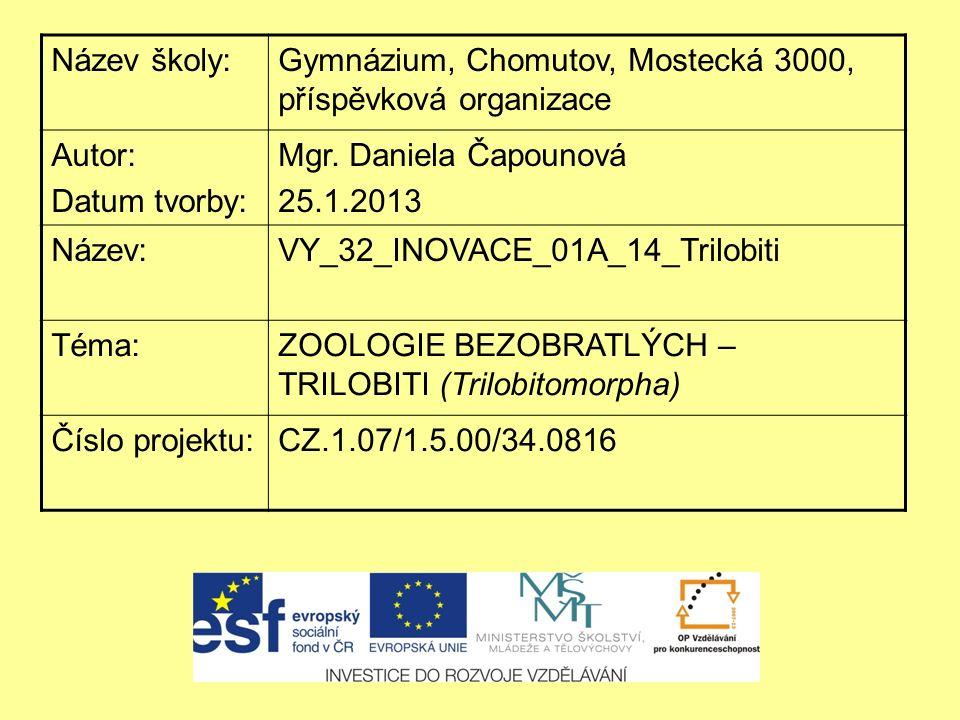 Název školy:Gymnázium, Chomutov, Mostecká 3000, příspěvková organizace Autor: Datum tvorby: Mgr. Daniela Čapounová 25.1.2013 Název:VY_32_INOVACE_01A_1