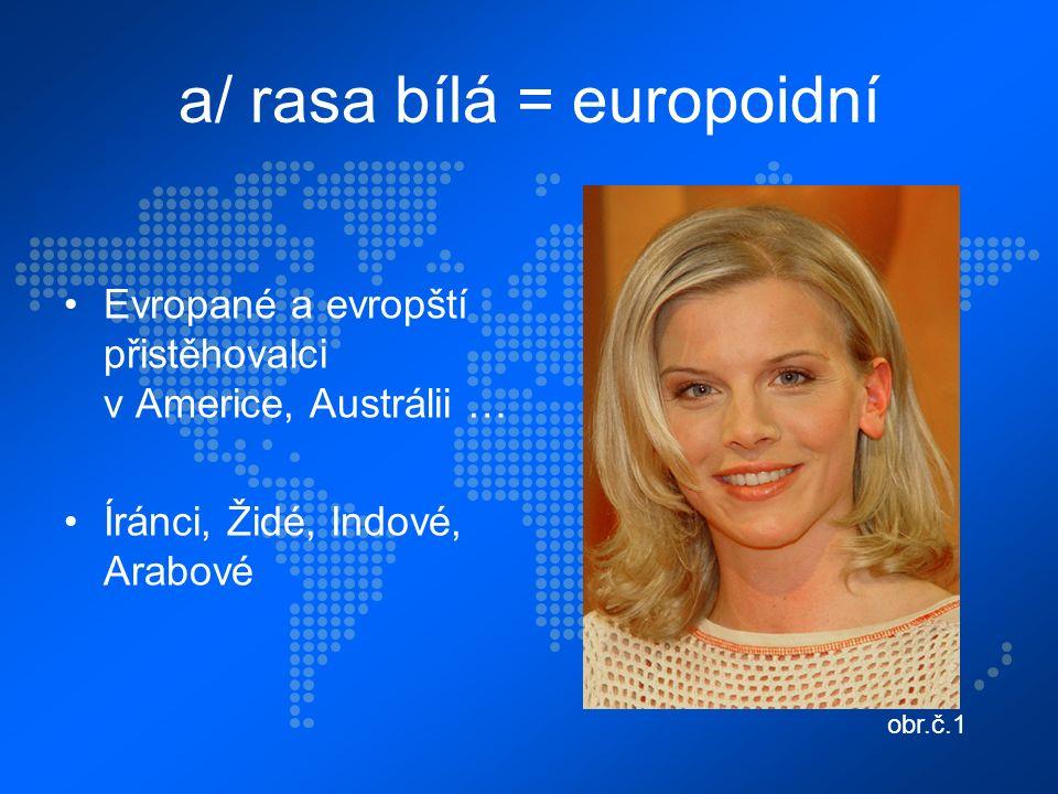 a/ rasa bílá = europoidní Evropané a evropští přistěhovalci v Americe, Austrálii … Íránci, Židé, Indové, Arabové obr.č.1