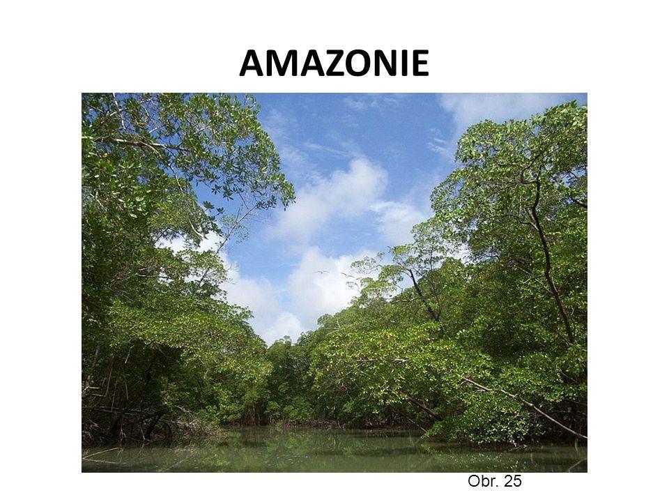 AMAZONIE Obr. 25