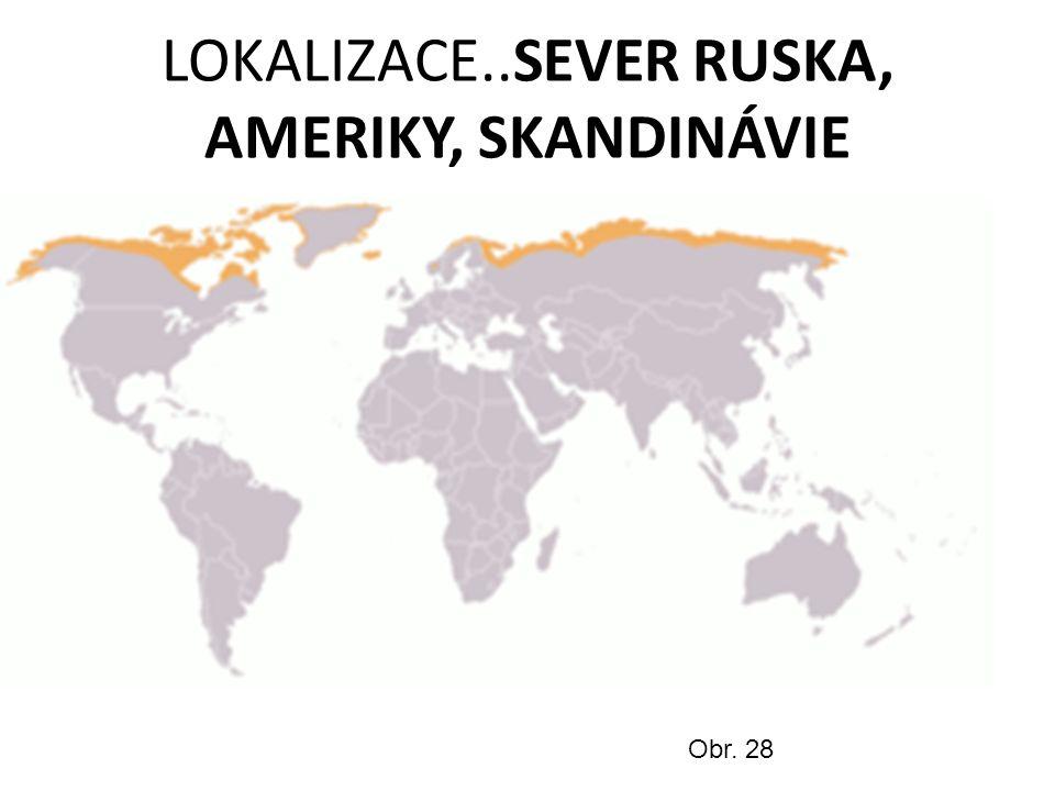 LOKALIZACE..SEVER RUSKA, AMERIKY, SKANDINÁVIE Obr. 28