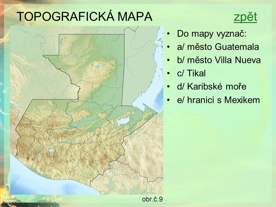 TOPOGRAFICKÁ MAPA zpětzpět Do mapy vyznač: a/ město Guatemala b/ město Villa Nueva c/ Tikal d/ Karibské moře e/ hranici s Mexikem obr.č.9