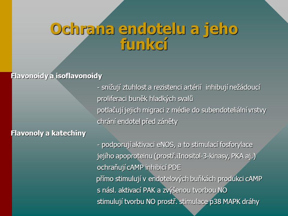 Ochrana endotelu a jeho funkcí Flavonoidy a isoflavonoidy - snižují ztuhlost a rezistenci artérií inhibují nežádoucí proliferaci buněk hladkých svalů