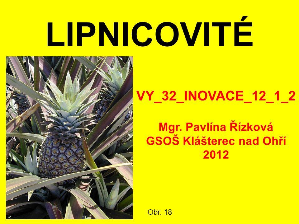 LIPNICOVITÉ Obr. 18 VY_32_INOVACE_12_1_2 Mgr. Pavlína Řízková GSOŠ Klášterec nad Ohří 2012