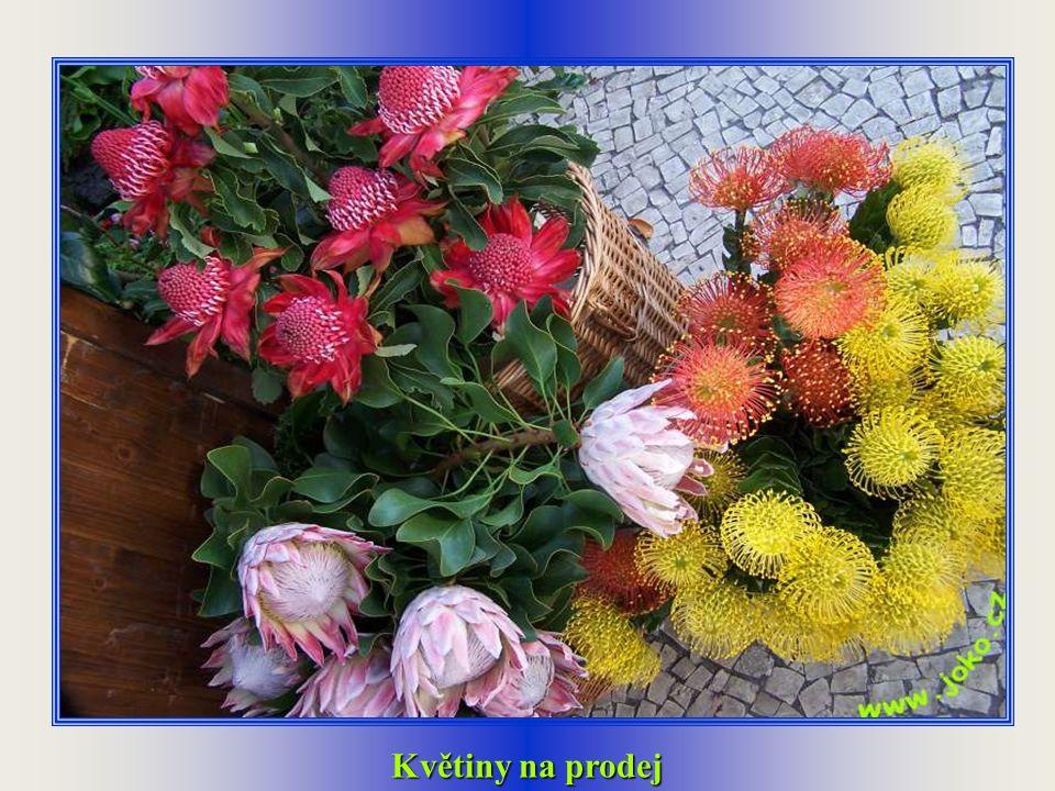 Prodavačka květin na tržnici