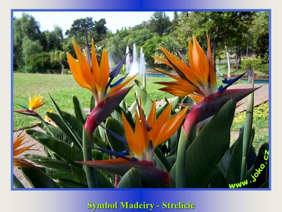Symbol Madeiry - trojúhelníkové domečky