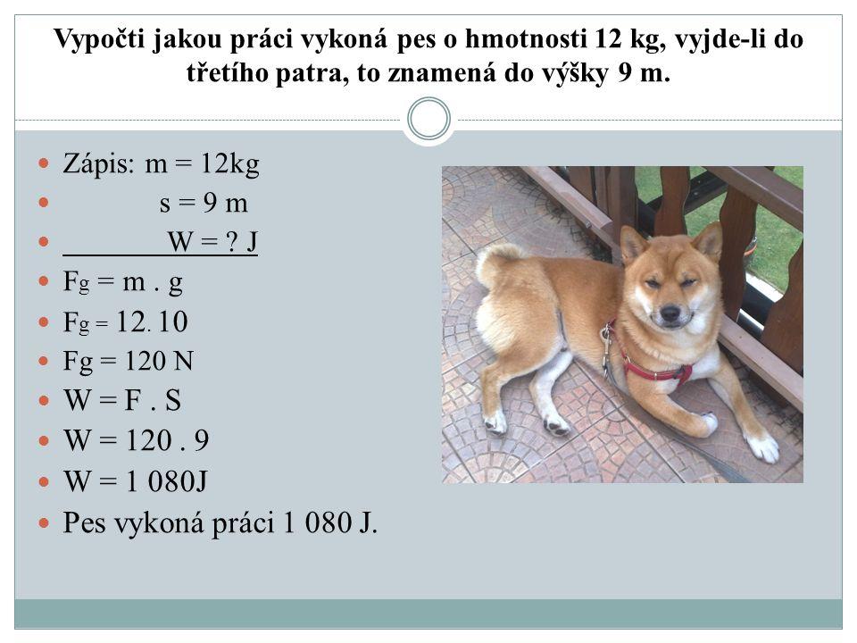 Vypočti jakou práci vykoná pes o hmotnosti 12 kg, vyjde-li do třetího patra, to znamená do výšky 9 m.