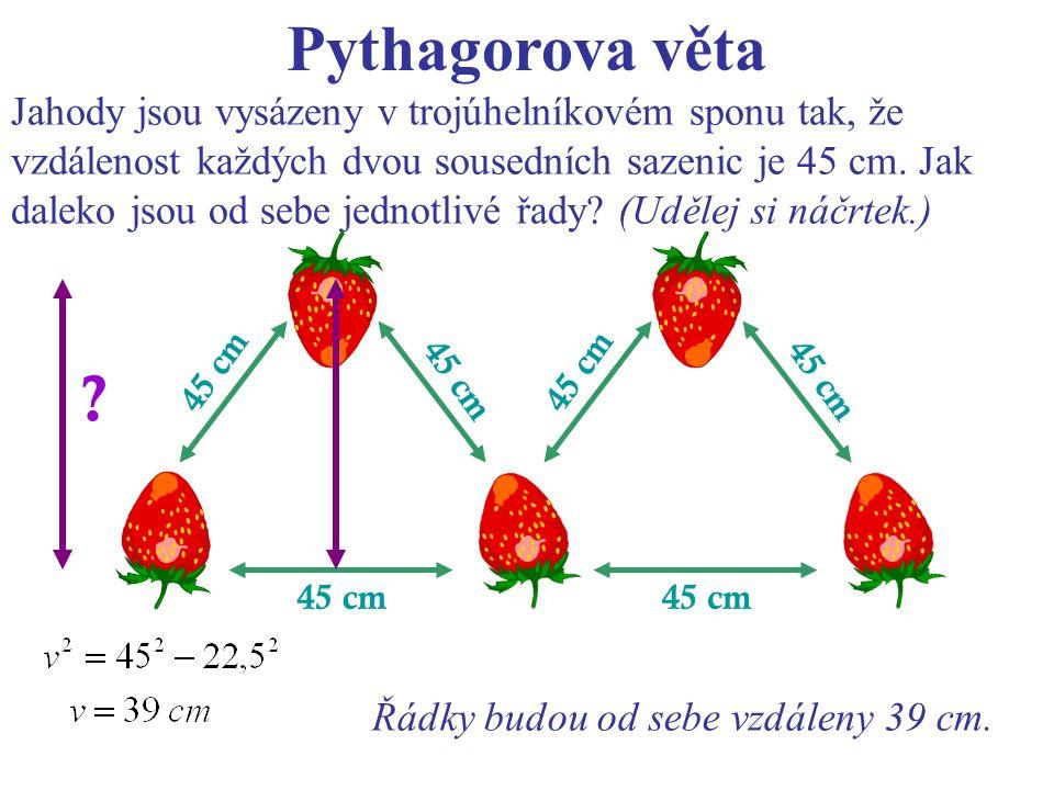 Pythagorova věta Jahody jsou vysázeny v trojúhelníkovém sponu tak, že vzdálenost každých dvou sousedních sazenic je 45 cm.