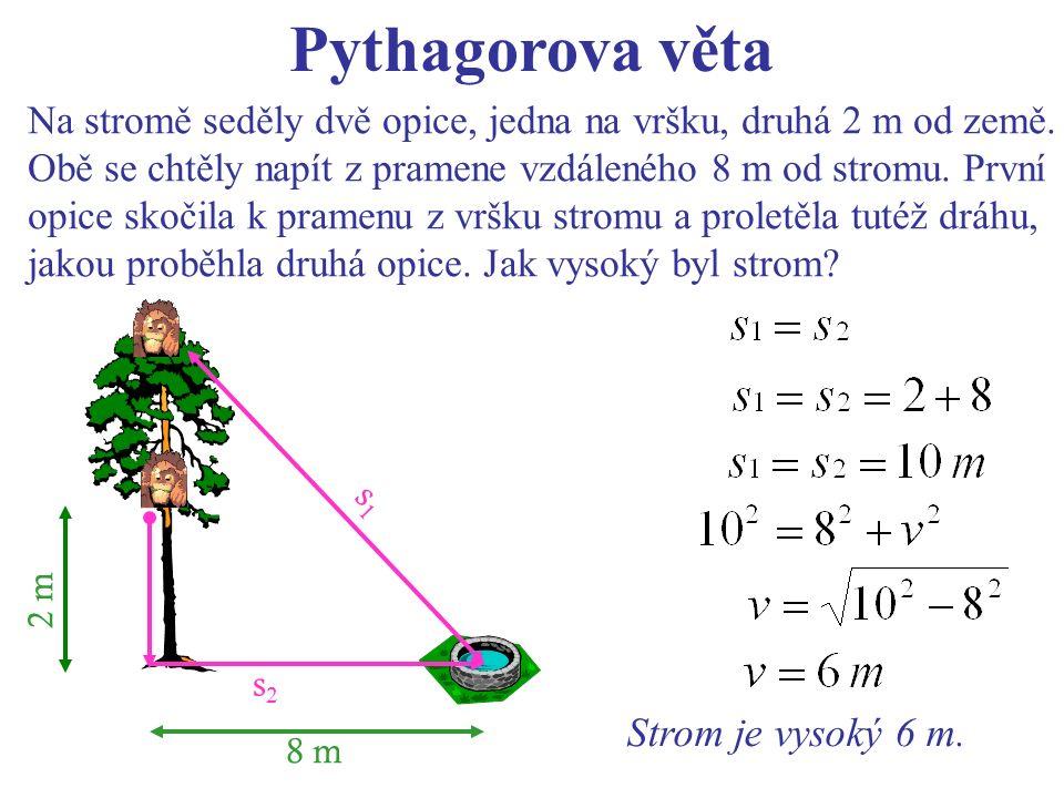2 m s1s1 s2s2 8 m Pythagorova věta Na stromě seděly dvě opice, jedna na vršku, druhá 2 m od země.
