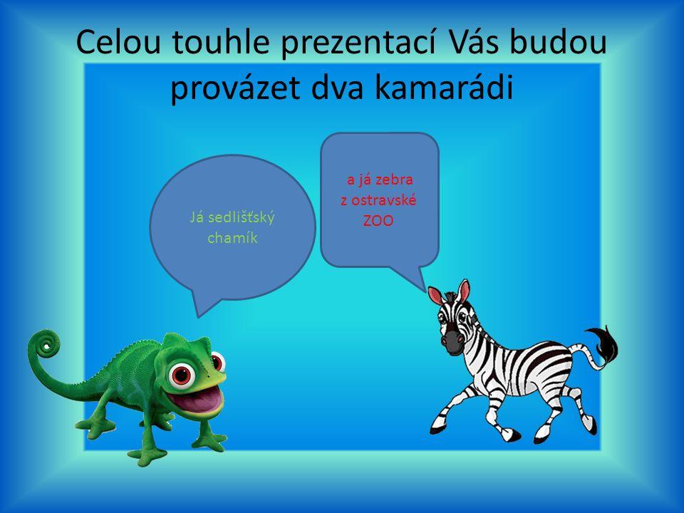 Celou touhle prezentací Vás budou provázet dva kamarádi Já sedlišťský chamík a já zebra z ostravské ZOO