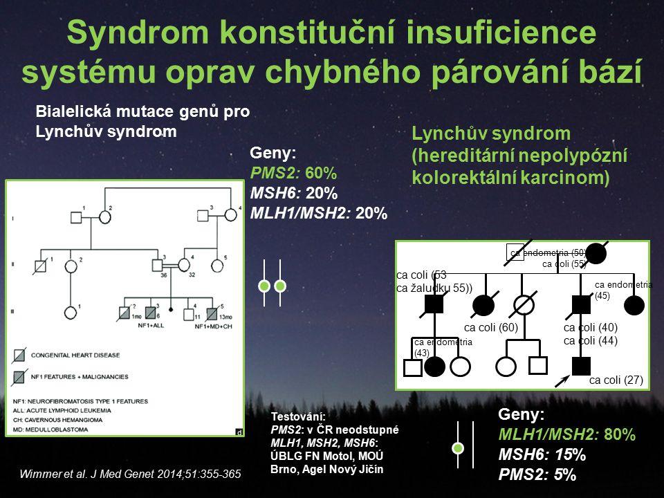Syndrom konstituční insuficience systému oprav chybného párování bází Wimmer et al.