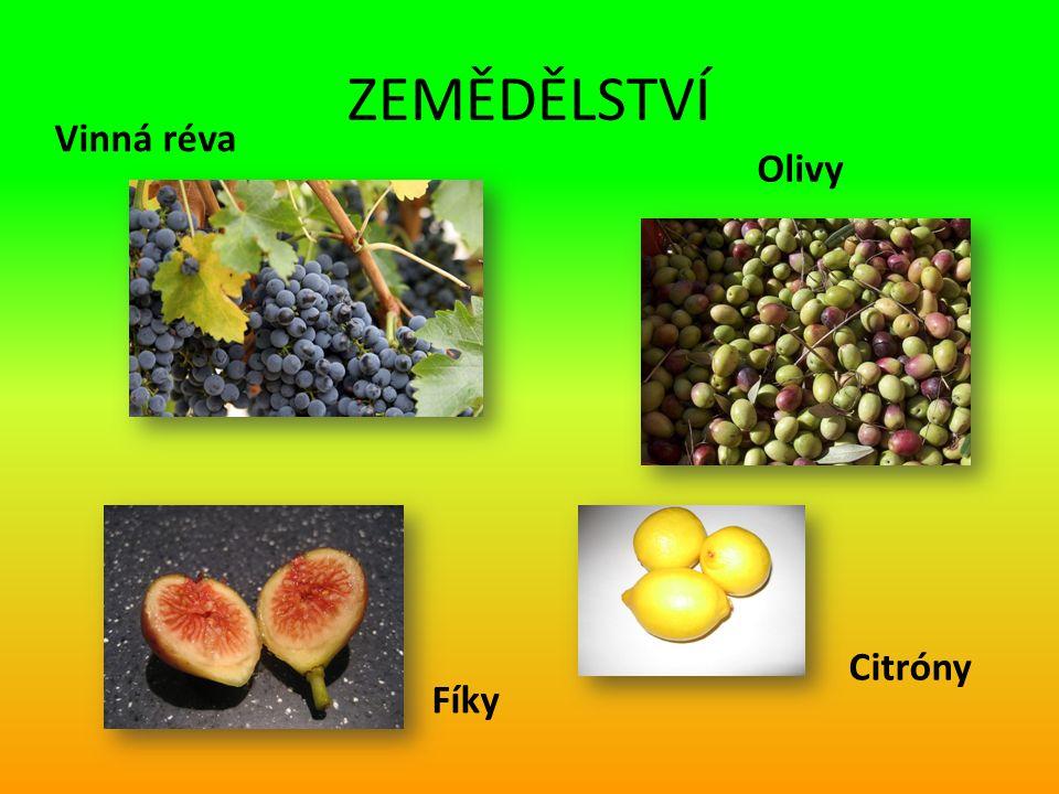 ZEMĚDĚLSTVÍ Vinná réva Olivy Citróny Fíky