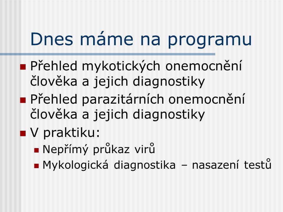 Mykotické a parazitární infekce pro studenty PřF hlavně pro obor Obecná biologie Ondřej Zahradníček