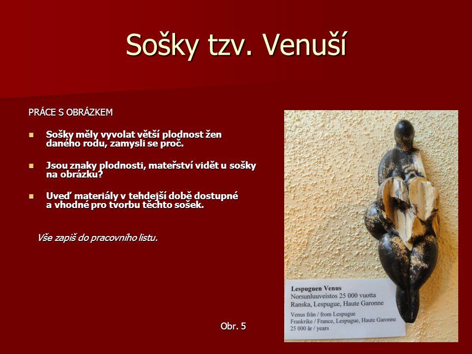Ukázky tzv. Venuší Venuše z Lespugue ve Francii Venuše z Lespugue ve Francii Obr. 5 Obr. 5