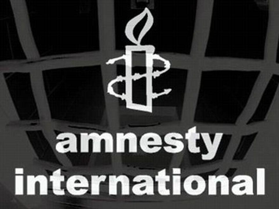 Amnesty International (známá také jako Amnesty či AI) je celosvětové hnutí, které monitoruje porušování lidských práv a iniciuje kampaně proti jejich porušování.