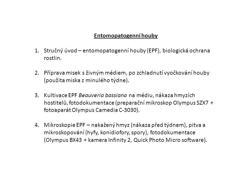 Entomopatogenní houby 1.Stručný úvod – entomopatogenní houby (EPF), biologická ochrana rostlin.
