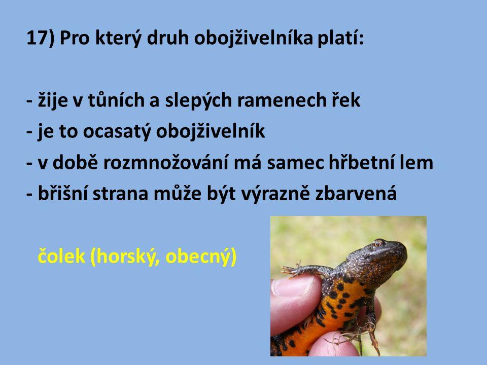 17) Pro který druh obojživelníka platí: - žije v tůních a slepých ramenech řek - je to ocasatý obojživelník - v době rozmnožování má samec hřbetní lem - břišní strana může být výrazně zbarvená čolek (horský, obecný)