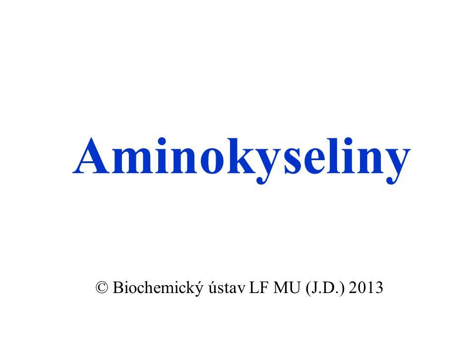 Aminokyseliny © Biochemický ústav LF MU (J.D.) 2013