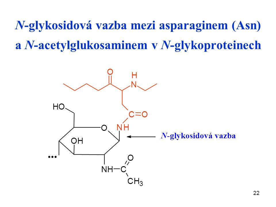 22 N-glykosidová vazba mezi asparaginem (Asn) a N-acetylglukosaminem v N-glykoproteinech...