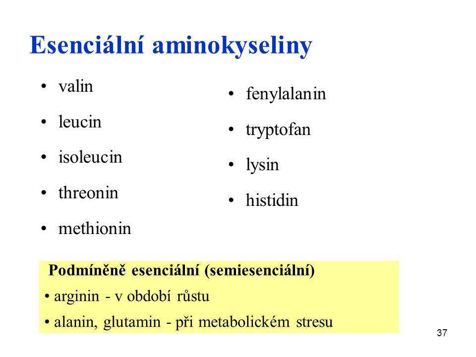 37 Esenciální aminokyseliny valin leucin isoleucin threonin methionin fenylalanin tryptofan lysin histidin Podmíněně esenciální (semiesenciální) arginin - v období růstu alanin, glutamin - při metabolickém stresu