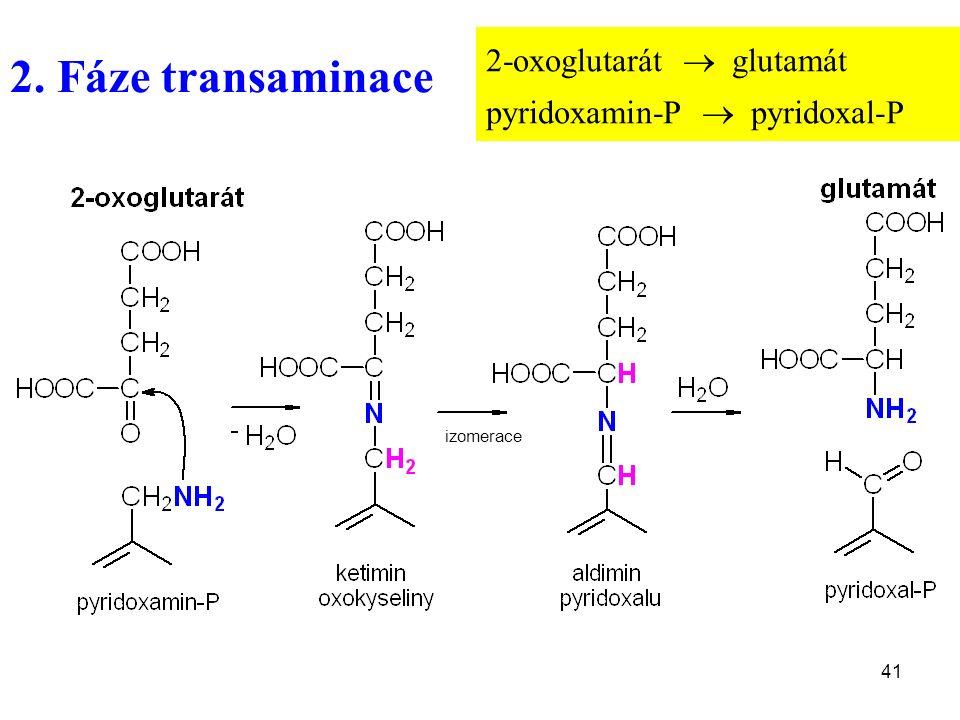41 2. Fáze transaminace 2-oxoglutarát  glutamát pyridoxamin-P  pyridoxal-P izomerace